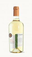 Víno PINOT GRIGIO VALDADIGE DOC 2019 Il Casato